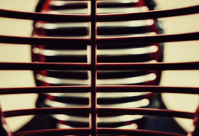 Kendo Wall Art - Photograph - Behind Those Bars... by Hans Zimmer