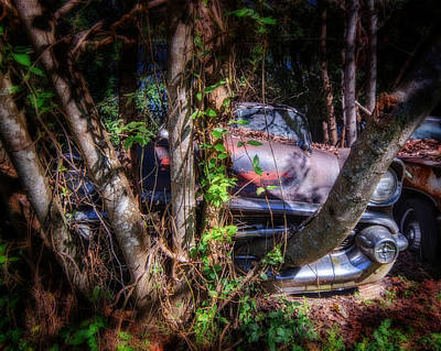 Photograph - Bel Air In Trees by Alan Raasch