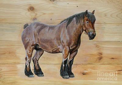 Painting - Belgian Draft Horse. by P van Munster