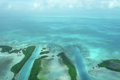 Photograph - Belize Topography Blue Rivers 2 by Toby McGuire