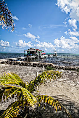 Photograph - Belizean Marina by Lawrence Burry