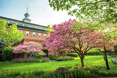Photograph - Belknap Mill - Flowering Crabapple by Robert Clifford