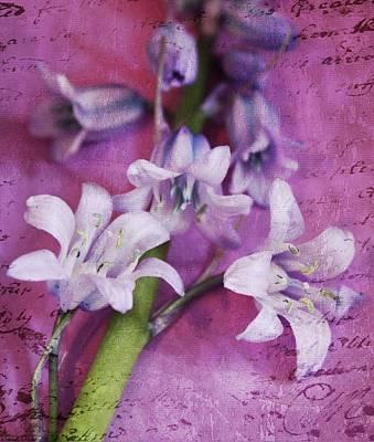 Purple Flowers Digital Art - Bell Flowers by Cathie Tyler