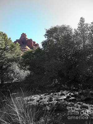 Photograph - Bell Rock Snow by Marlene Rose Besso