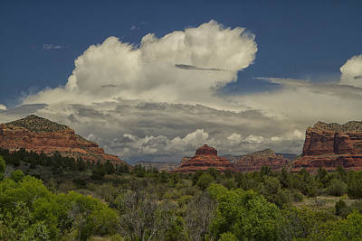 Photograph - Bell Rock's Beauty by Tom Kelly