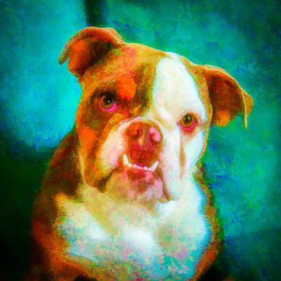 Watercolor Pet Portraits Photograph - Bella 1 by Joye Ardyn Durham