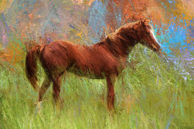 Bella In Bold Pastels Art Print by Shannon Story