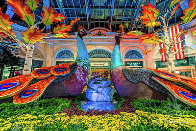 Photograph - Bellagio Conservatory Fall Peacock Display 2017  by Aloha Art