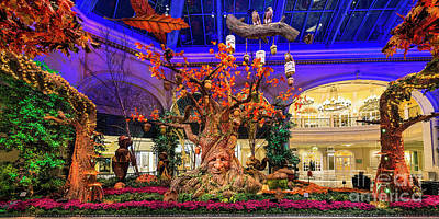 Photograph - Bellagio Enchanted Talking Tree Ultra Wide 2016 by Aloha Art
