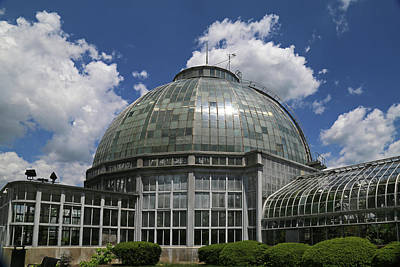 Photograph - Belle Isle Conservatory 4 by Mary Bedy