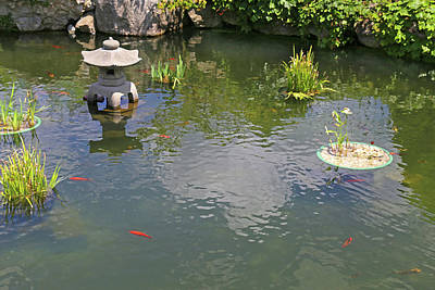 Photograph - Belle Isle Conservatory Pond by Mary Bedy