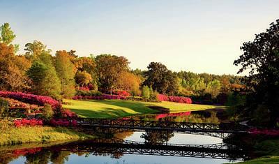 Photograph - Bellingrath Gardens - Alabama by L O C