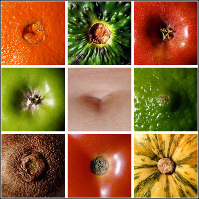 Belly Button Photograph - Belly Button by Tim Nichols