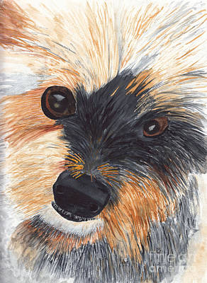 Painting - Beloved Yorkshire Pup by Conni Schaftenaar