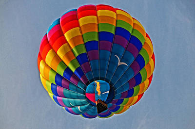 Photograph - Below A Balloon by Mike Martin