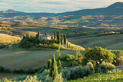 Photograph - Belvedere - Tuscany by Brian Jannsen
