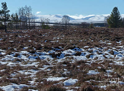 Photograph - Ben Avon From Moorland Near Tomintoul by Phil Banks