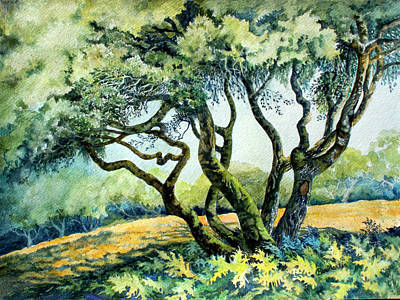 Painting - Ben Lomond Oak by Beverly Martin