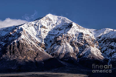 Photograph - Ben Lomond Peak by Roxie Crouch