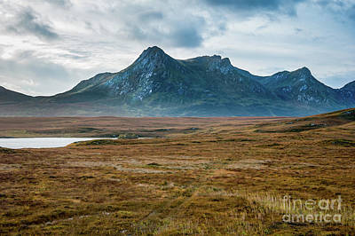 Photograph - Ben Loyal by Gary Eason