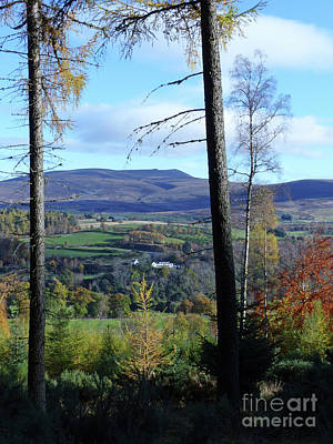 Photograph - Ben Rinnes From Ballindalloch by Phil Banks