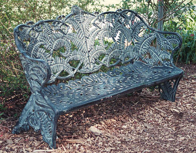 Photograph - Bench by Allen Nice-Webb