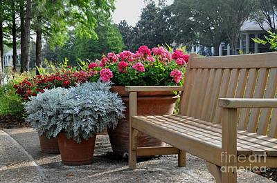 Photograph - Bench And Flowers by John Black