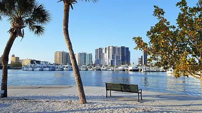 City Photograph - Bench At Marina Jacks by Ric Schafer