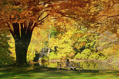 Photograph - Bench Break by Diana Angstadt