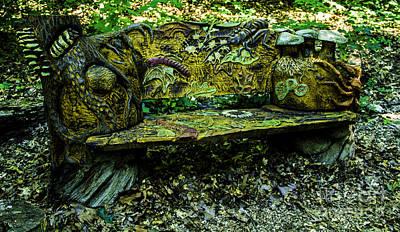 Photograph - Bench Extraordinaire by Allen Nice-Webb