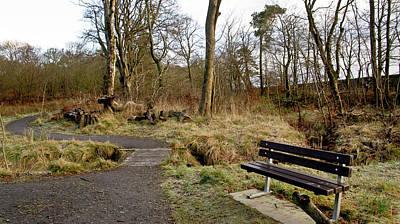 Photograph - Bench In Polkemmet Park. by Elena Perelman
