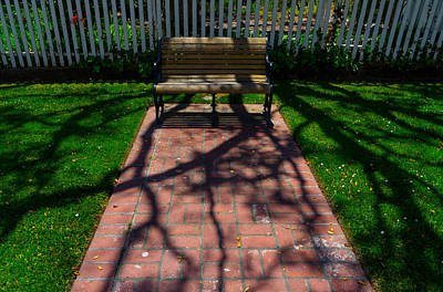 Photograph - Bench In Shadows by Derek Dean