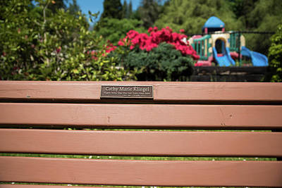 Photograph - Bench In Steelhead Park by Tom Cochran
