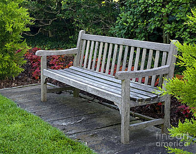 Photograph - Bench In The Garden by Robert  Suggs