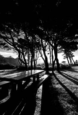 Photograph - Bench In The Shadows by Dale Stillman