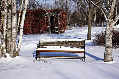 Photograph - Bench In Winter by Debbie Oppermann