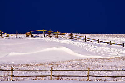 Bench On A Winter Hill Original by Don Nieman