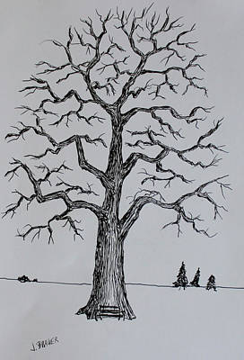 Drawing - Bench Tree by Jack G Brauer