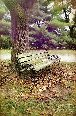 Photograph - Bench Under A Tree by Jill Battaglia