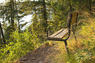 Photograph - Bench With A View by Idaho Scenic Images Linda Lantzy