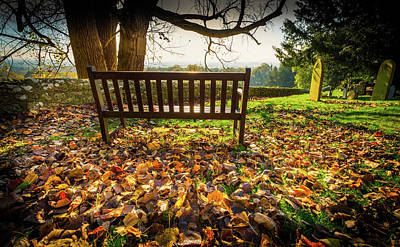 Photograph - Bench With Autumn Leaves by Gary Gillette