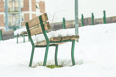 Photograph - Bench With Snow by Benny Marty