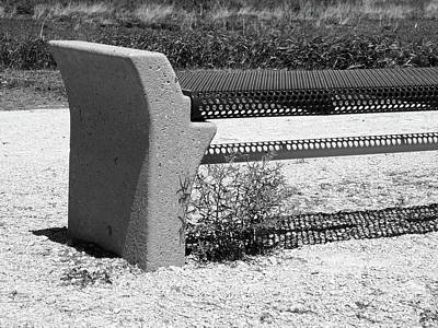 Photograph - Benched by Tom Druin