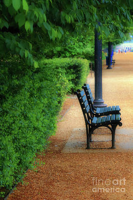 Photograph - Benches At The National Mall by Elizabeth Dow