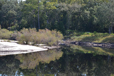 Photograph - Bend In St Mary's River by rd Erickson