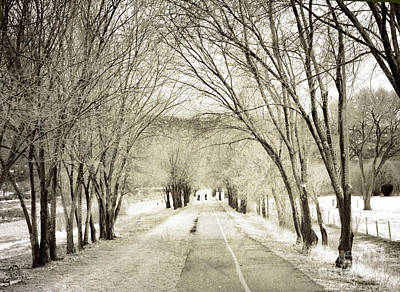 Photograph - Beneath The Branches by Tara Turner