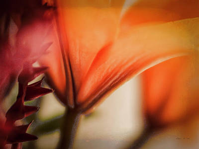 Photograph - Beneath The Lily by Bellesouth Studio