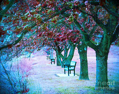 Photograph - Beneath The Pastel Leaves by Tara Turner