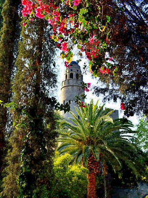 Photograph - Benedict Castle - California by Glenn McCarthy Art and Photography