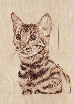 Pyrography Drawing - Bengal Cat - Wood Burning by Mohammed Imran